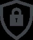 noun_Security_957678-1 (1)